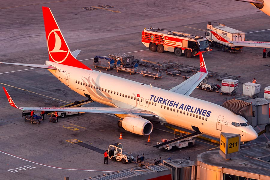 Turkish Airlines fires 'over 200 staff over links to coup'